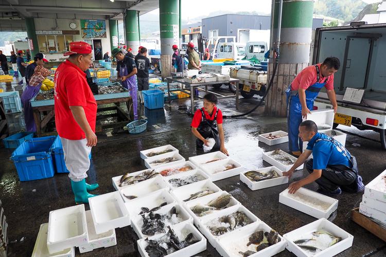 長島東町漁協で当日仕入れて発送